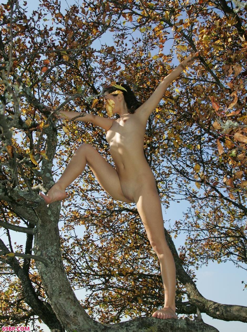 超模Dasha树上的大尺度人体